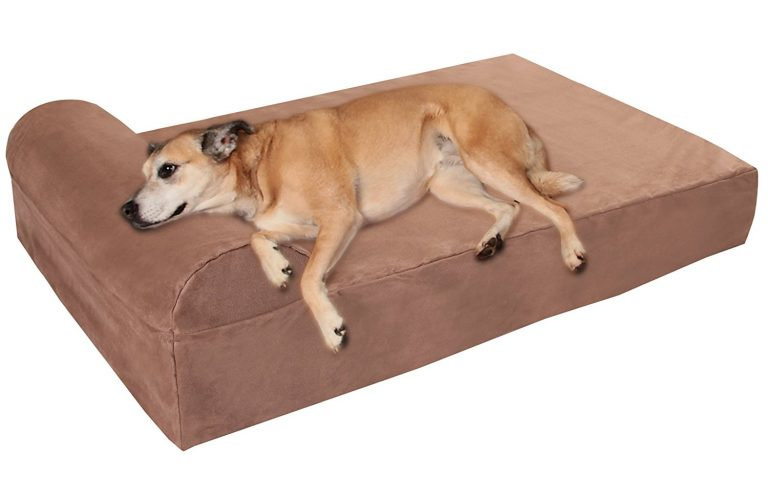 Check out one of the best pet beds for big dogs, this one resembles a futon fainting couch