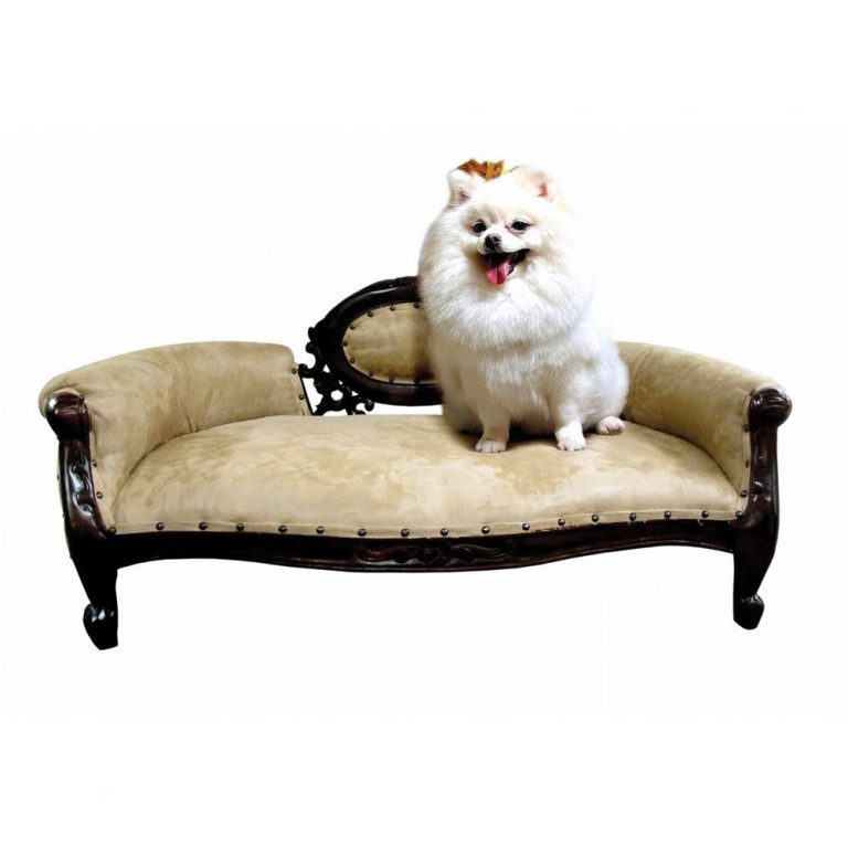 Spurge on stylish pet beds for your furry friend, like this mini french sofa to make your pet look posh