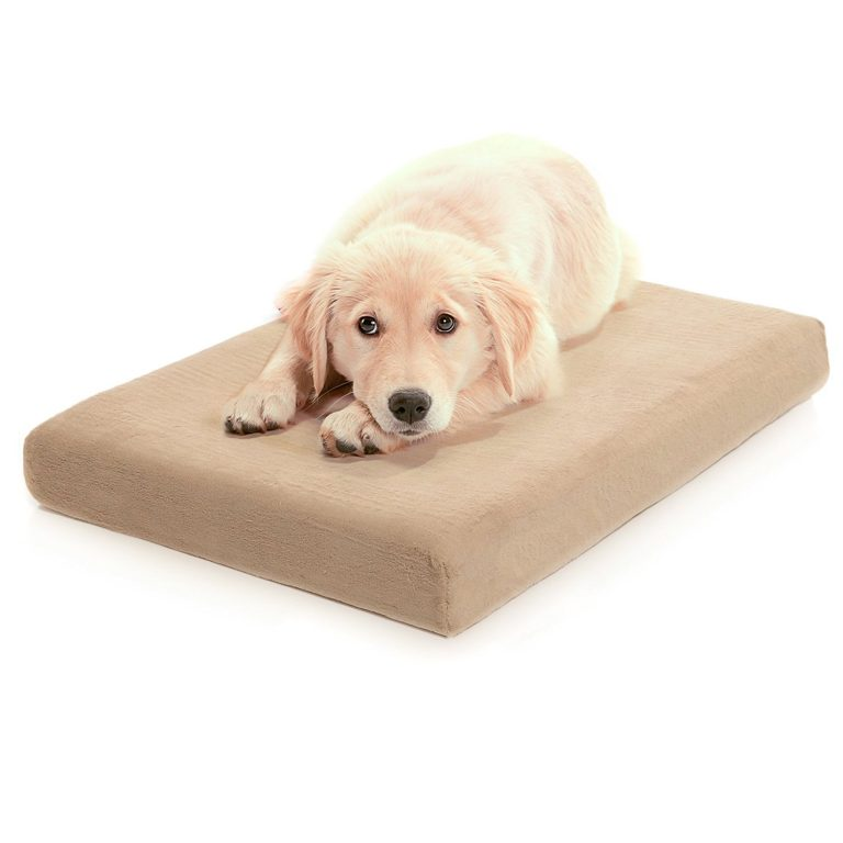 You don't have to spend a fortune for the best pet beds even orthopedic ones like this beige rectangular bed