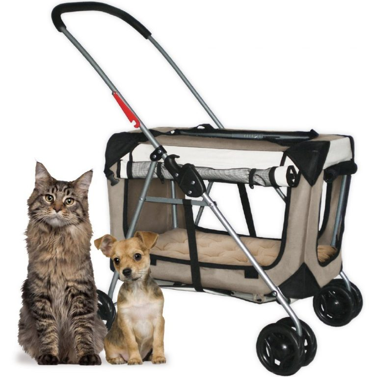 The best pet carriers let your pet see outside.