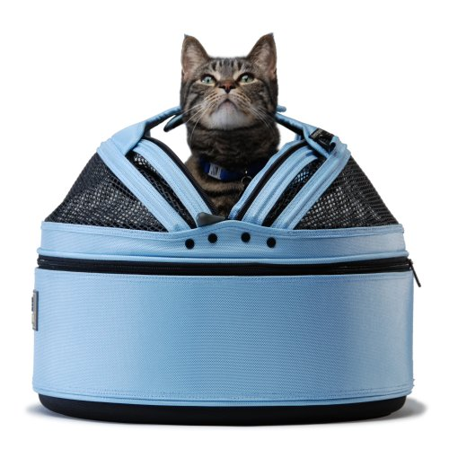 Some cats like to sleep in their cat carrier.