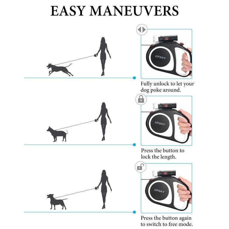 best dog leash retractable