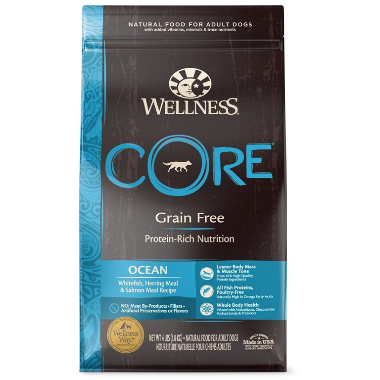 A bag of Wellness Core grain-free pet food.