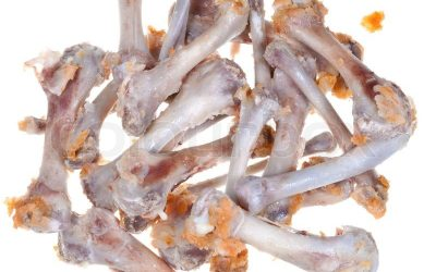 Things You Should Do Once Your Dog Ate Chicken Bones