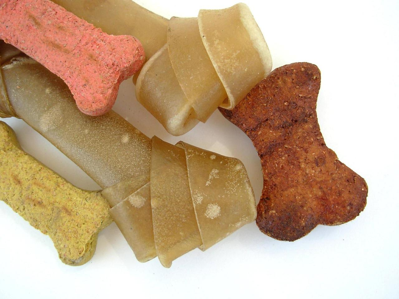dog-bones-puppy-pet-dog-food-food
