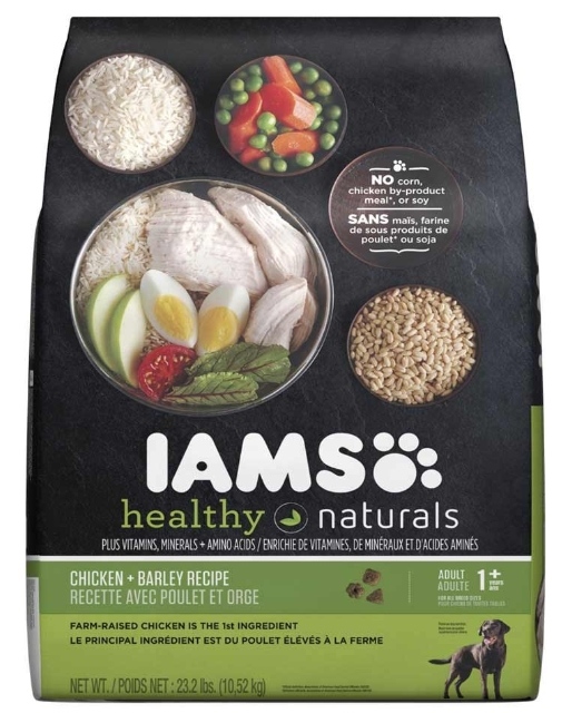 best affordable dog food Iams