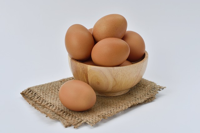 egg-white-food-protein-eggshell